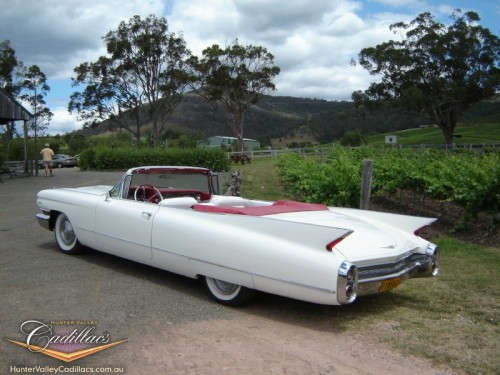 Hunter Valley Wine Tours Cadillac Convertible