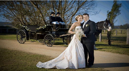 Wedding Carriage, Horse and Carriage, Horse Drawn Carriage